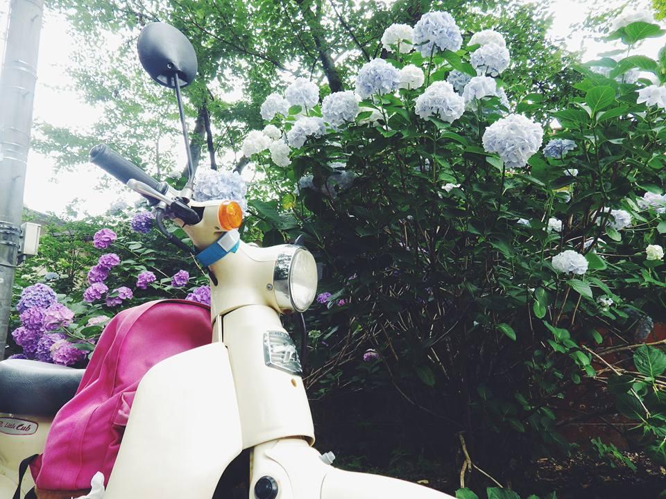Đổi bằng lái xe máy ở Nhật.