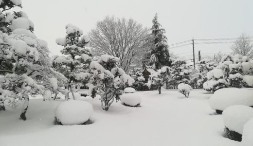 Xó#14: Mùa đông ở Nhật và những từ vựng liên quan